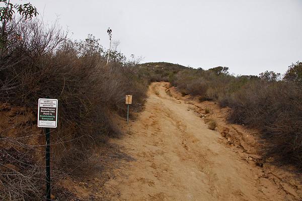 DP Ridge - existing erosion - Dec 1 2014
