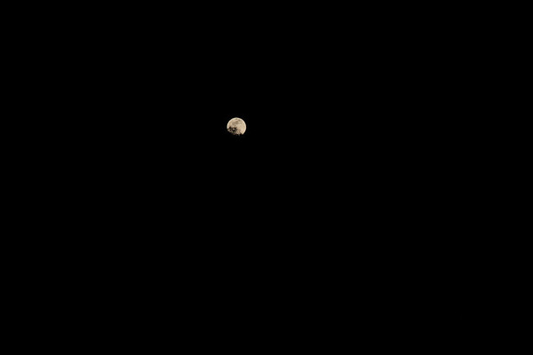 Deer Park - Vesak - Full Moon Hike - May 2012