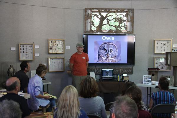 Owl Box Building - Aug 12