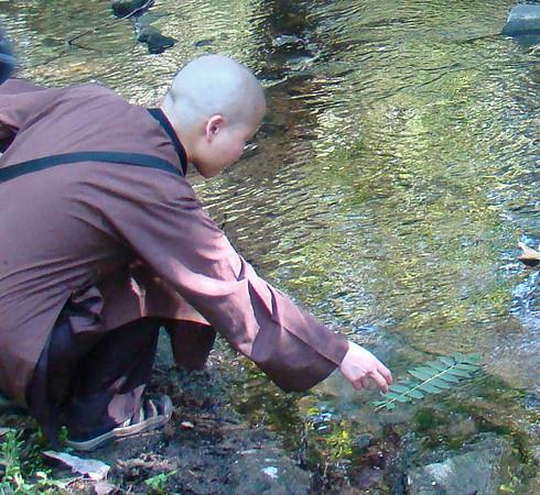 Sky Mountain - Picnic for Deer Park Monastics